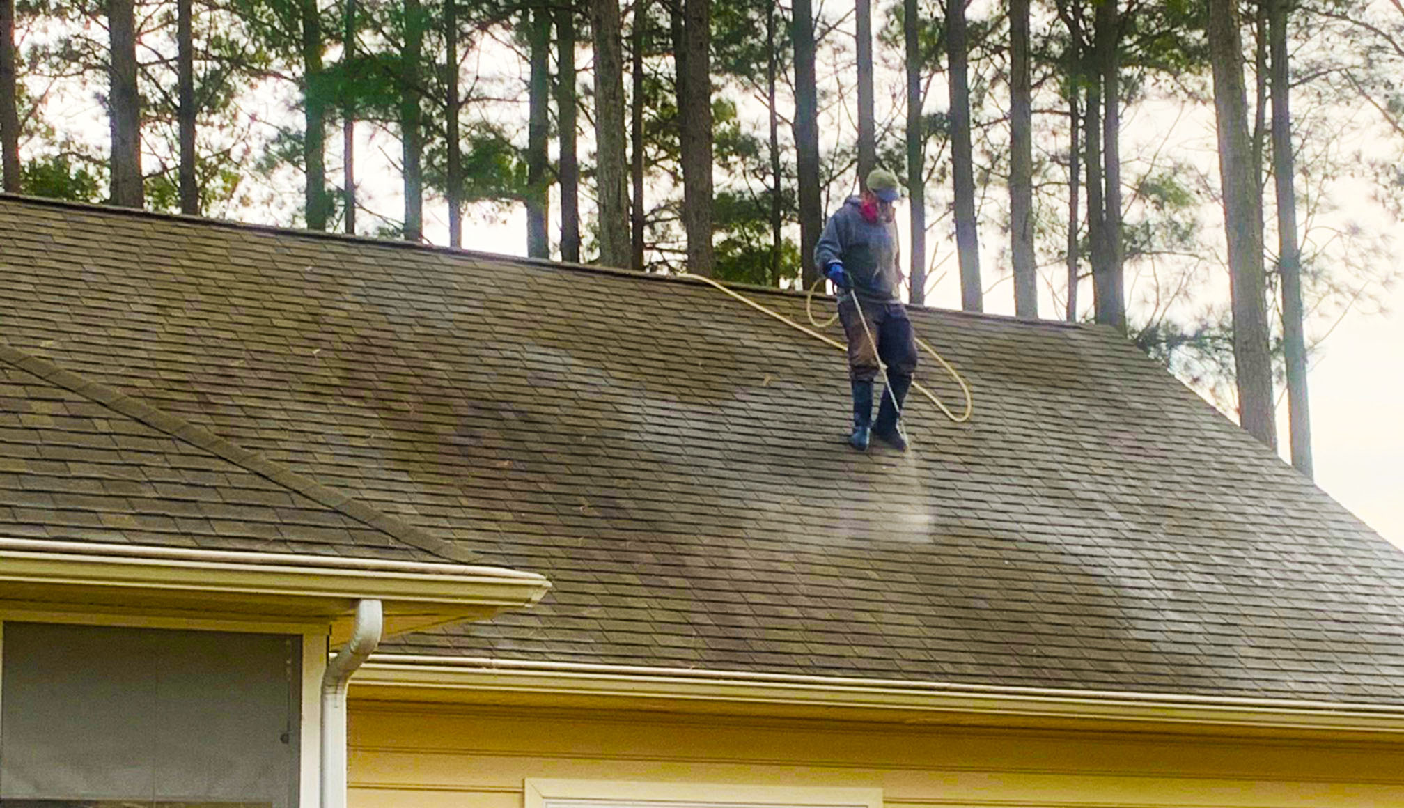 Pressureless Roof Cleaning